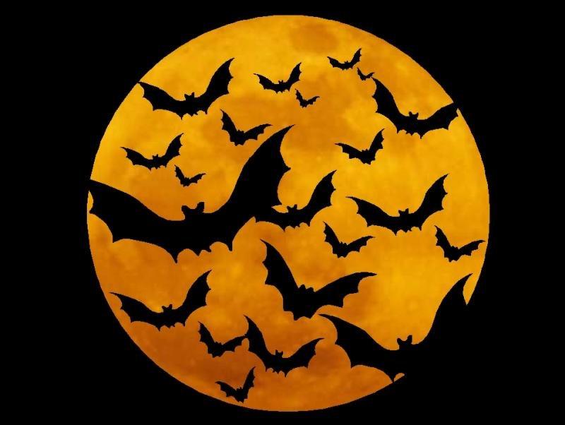 картинки к хеллоуину скачать